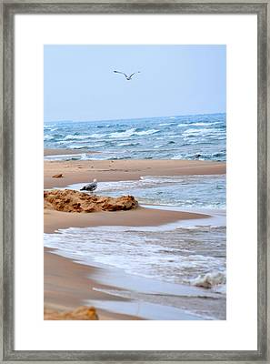 Michigan Seashore Framed Print by Tina Karle