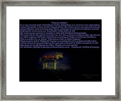 Micro Art Donation Framed Print by Phillip H George