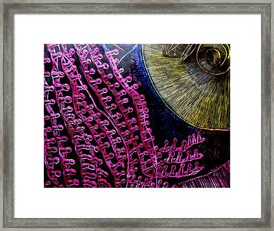Framed Print featuring the drawing Micro Beetle Phase Two by Lisa Brandel