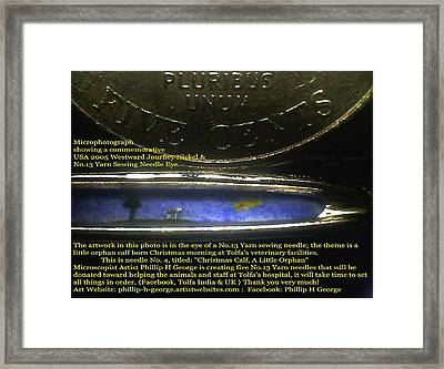 Microphotograph  Framed Print by Phillip H George