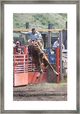 Mid-air Framed Print by KD Johnson