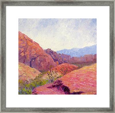 Mid Day Valley Of Fire Framed Print by Terry  Chacon