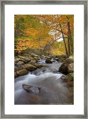 Mid Stream II Framed Print by Charles Warren
