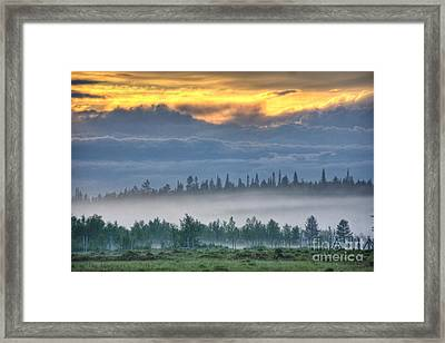Mid Summer Night's  Fog Framed Print by Heiko Koehrer-Wagner