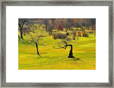 Middle Earth Framed Print by Joshua McCullough