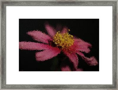 Midnight Bloom Framed Print