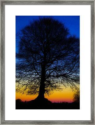 Midnight Calm Framed Print