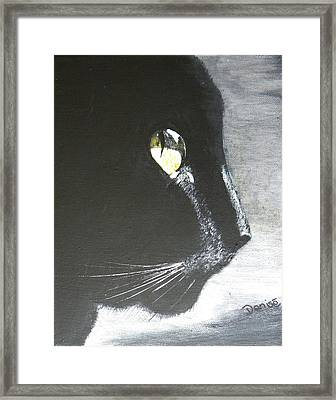 Midnight Prowler Framed Print