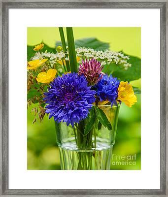Midsummer In A Glass Framed Print by Lutz Baar