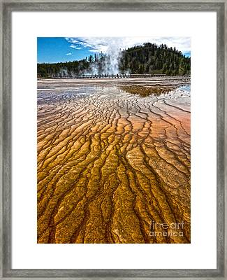 Midway Geyser Basin Spring In Yellowstone National Park Framed Print by Gregory Dyer