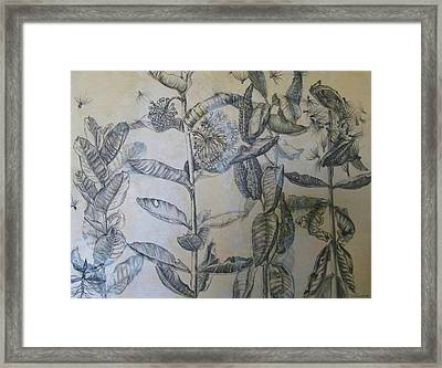 Milkweeds Framed Print by Ruth Greenlaw