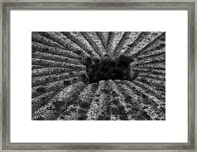 Mill Stone Framed Print by Carrie Cranwill