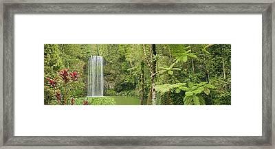 Millaa Millaa Falls Panorama Framed Print by Johan Larson