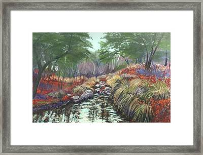 Miller Canyon Creek Framed Print
