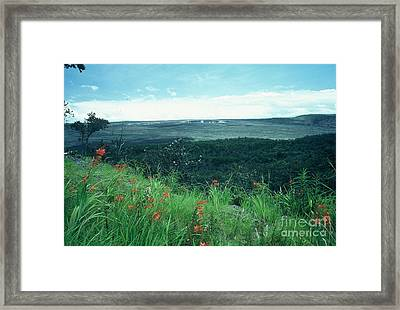 Million Dollar View Framed Print by Alcina Morello