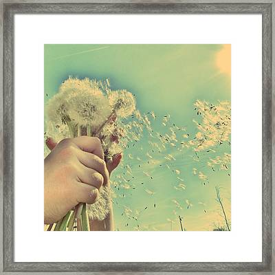 Millions Of Wishes... Framed Print
