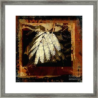 Mimosa Leaf Collage Framed Print by Ann Powell