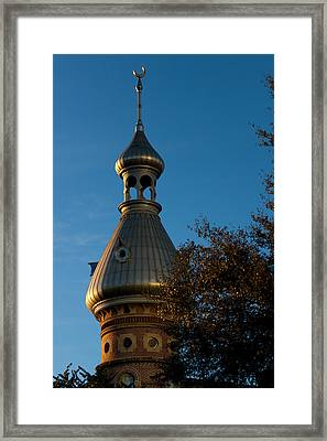 Framed Print featuring the photograph Minaret And Trees by Ed Gleichman
