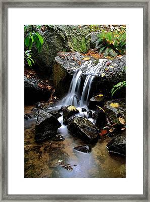Minifalls Framed Print by Scott Holmes