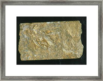 Mining Drill Core Sample With Gold Content Framed Print by Kaj R. Svensson