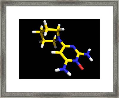 Minoxidil Molecule, Hair Growth Drug Framed Print by Dr Tim Evans