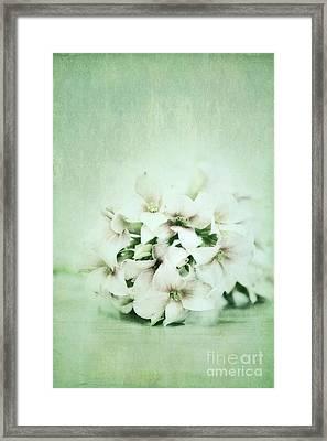 Mint Green Framed Print by Priska Wettstein