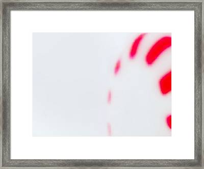 Framed Print featuring the photograph Mint by Stephanie Nuttall