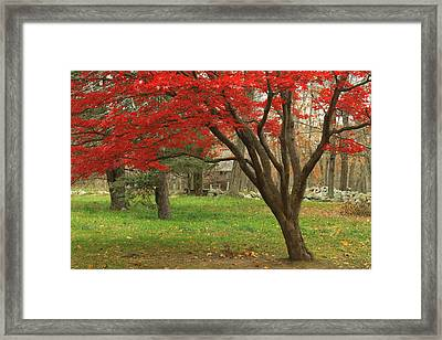 Minuteman National Historic Park Late Foliage Framed Print by John Burk