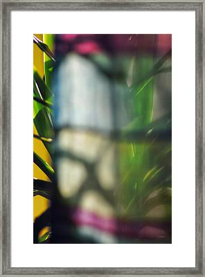 Mirage Framed Print by Marisa Matis