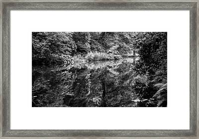 Mirror Framed Print by Guillermo Luengas