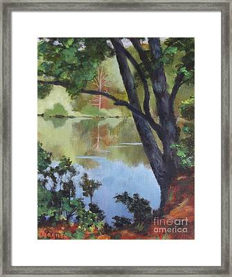 Mirror Reflection Framed Print