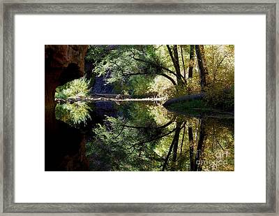 Mirror Reflection Framed Print