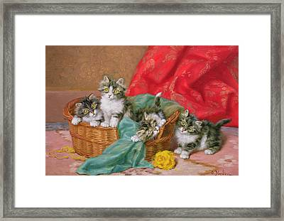 Mischievous Kittens Framed Print
