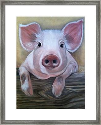 Miss Piggy Framed Print by Stephanie L Carr