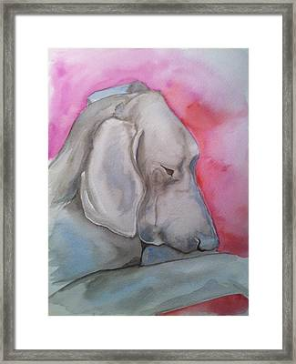 Miss Zoe Framed Print