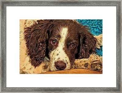 Missing Jared Framed Print by James Steele
