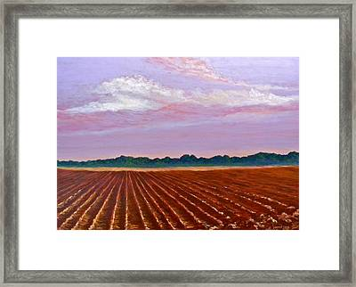 Mississippi Land And Sky Framed Print
