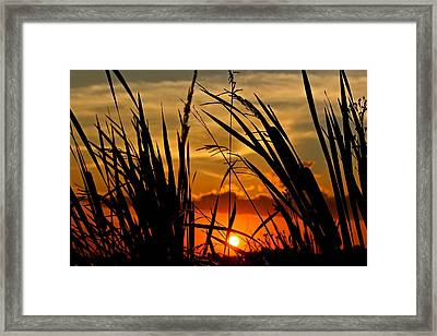 Mississippi Sunset At The Ross Barnett Reservoir 2 Framed Print