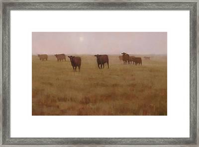 Missouri Morn Framed Print by Brian Freeman