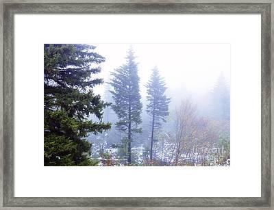 Mist Along The Highland Scenic Highway Framed Print