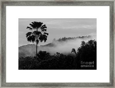 Mist Od Dawn.  Framed Print