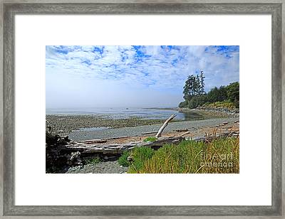 Mist On The West Coast Framed Print by Louise Heusinkveld