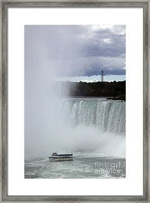 Misty Framed Print by Amanda Barcon