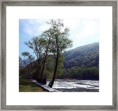Misty Blue Morning Framed Print by Jim Goldseth
