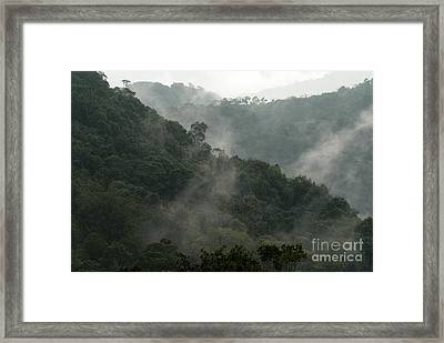 Framed Print featuring the photograph Misty Cloud Forest Matagalpa Nicaragua by John  Mitchell