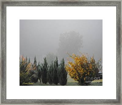 Misty Fall Day Framed Print by Lorraine Louwerse