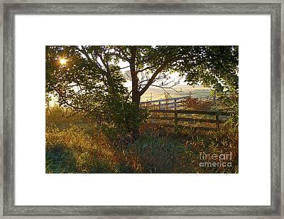 Misty Farm Sunrise Framed Print by Gordon Wood