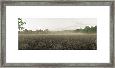 Misty Grounds Framed Print by Jan W Faul