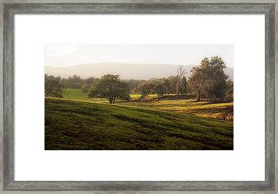 Framed Print featuring the photograph Misty Maui Morning by Trever Miller