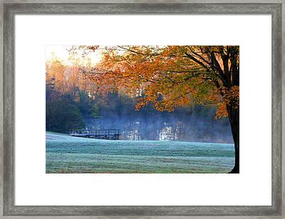 Misty Morning At The Lake Framed Print